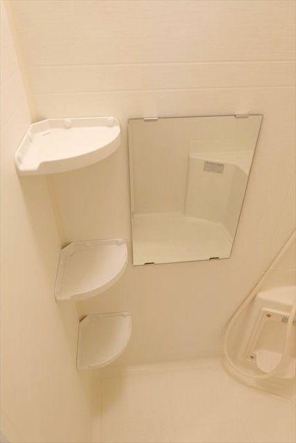 エレガンシア ルーナ 02010号室の風呂