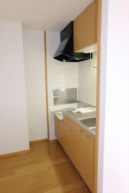 エレガンシア ルーナ 02010号室のキッチン