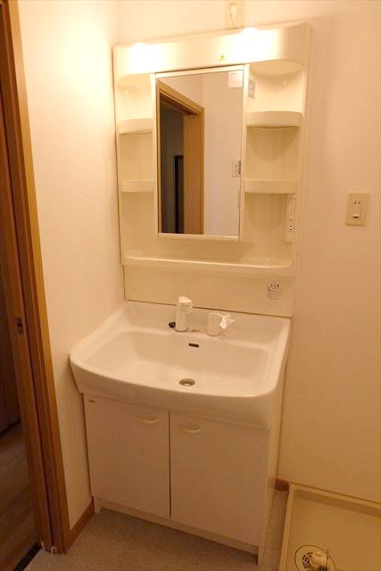 エレガンシア ルーナ 02010号室の洗面所