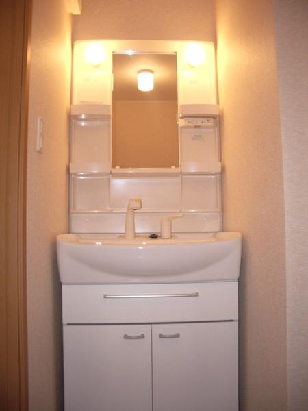 ハーモニーB 101号室の洗面所