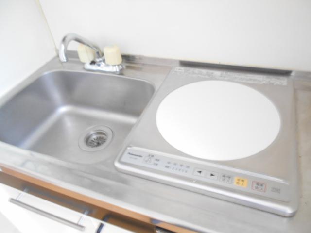ドーミ-セイセキ 201号室のキッチン