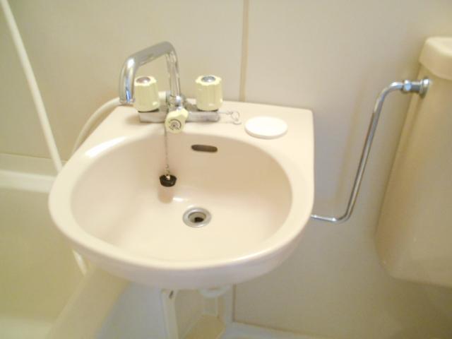 ドーミ-セイセキ 201号室の洗面所