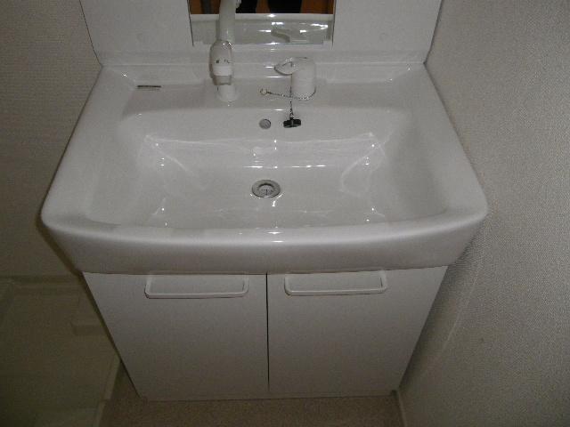 フェニックス 01010号室の洗面所