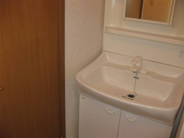 シャン・ド・ポワ-ルA 01020号室の洗面所