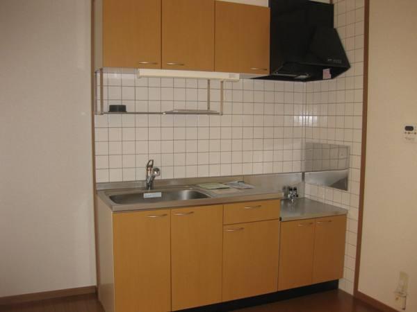 シャン・ド・ポワ-ルA 01020号室のキッチン