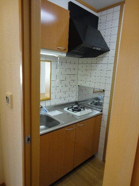 サンガーデンU 103号室のキッチン