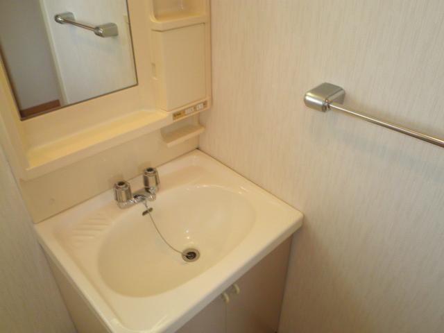 ファミール下之宮1 01030号室の洗面所