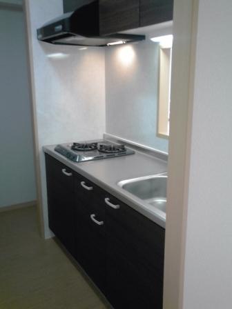 ローヤル ヒルコートM 101号室のキッチン