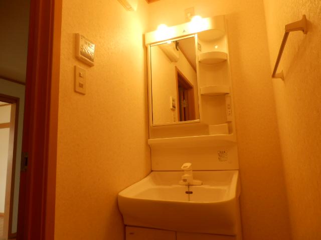 ヒルサイドテラス上中里 02020号室の洗面所