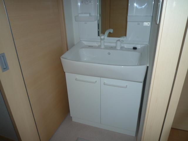 カーサヴィオラA 02010号室の洗面所