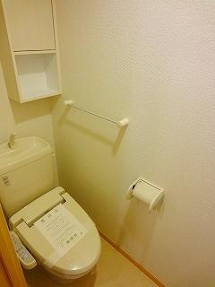 エバーグリーン 303号室のトイレ