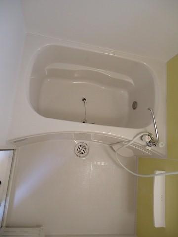 ヒルサイド向山 01020号室の風呂