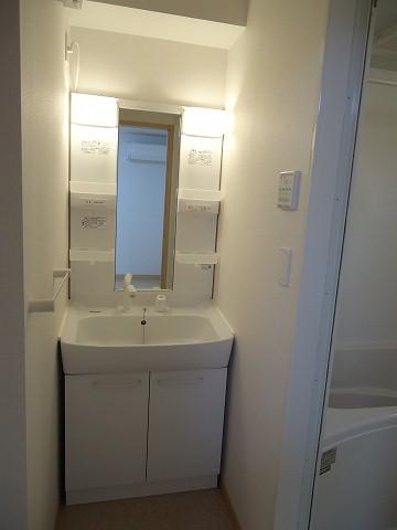 ヒルサイド向山 01020号室の洗面所