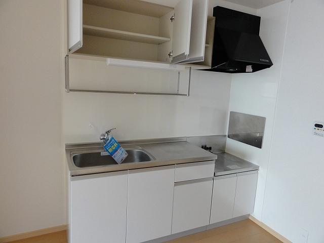 レジデンス井龍 201号室のキッチン