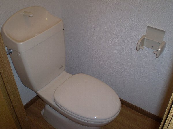 ラッフィナートA 01010号室のトイレ