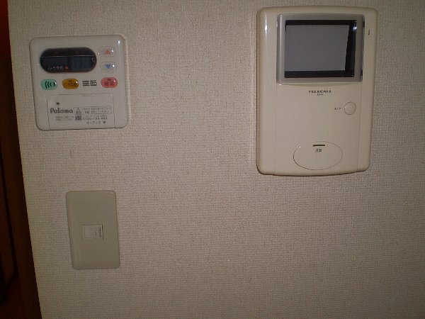 ラッフィナートA 01010号室のセキュリティ