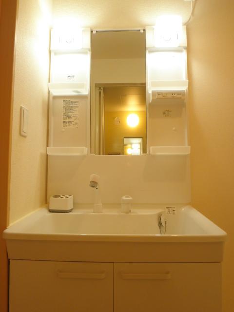 Alegria 02030号室の洗面所