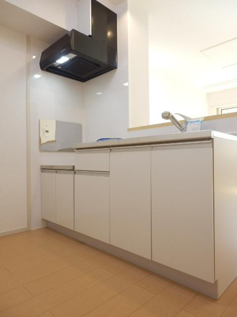 ムーンライト 02040号室のキッチン