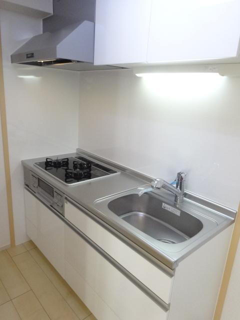 ジラソーレ 上桂 103号室のキッチン