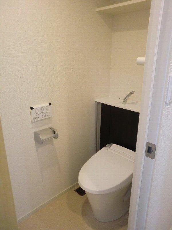 グランドコート おおひら 304号室のトイレ