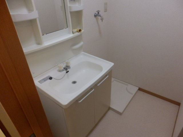 ビューヒル南 0102号室の洗面所