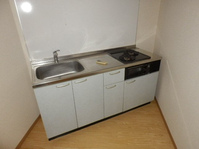 ビューヒル南 0102号室のキッチン