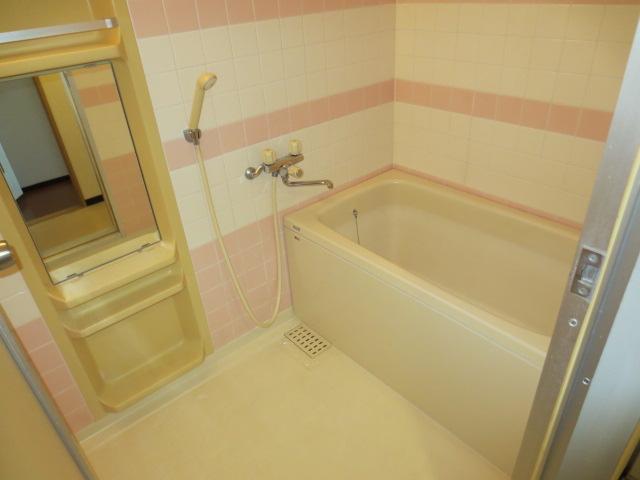 ファインドエル2新宿 204号室の風呂