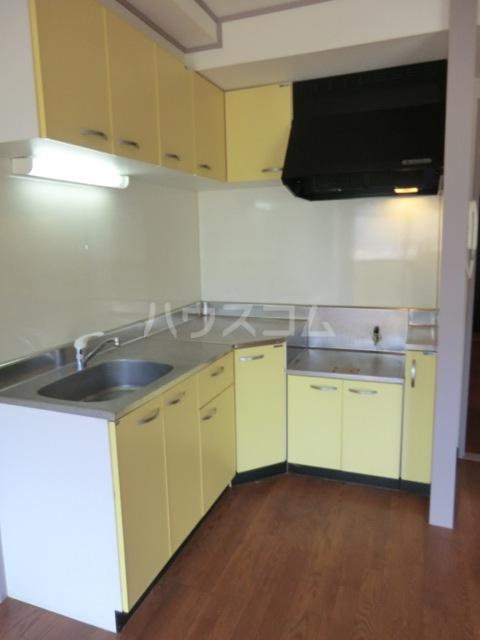 新田第5中島ハイツ 103号室のキッチン