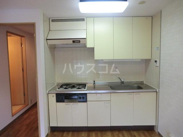 浦和エメラルドグリーン 503号室のキッチン