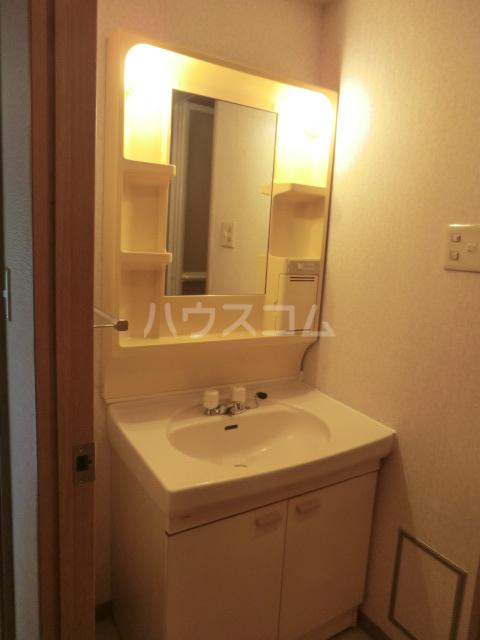 浦和エメラルドグリーン 503号室の洗面所
