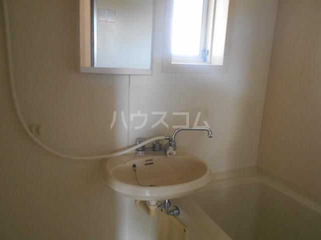 ヒルサイドテラス 202号室の洗面所