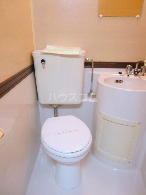ドミール江西 301号室のトイレ