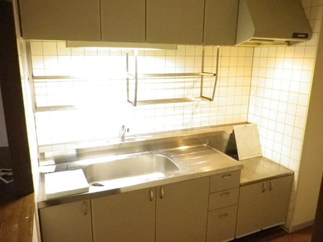 ラフィネ南十一番 503号室のキッチン
