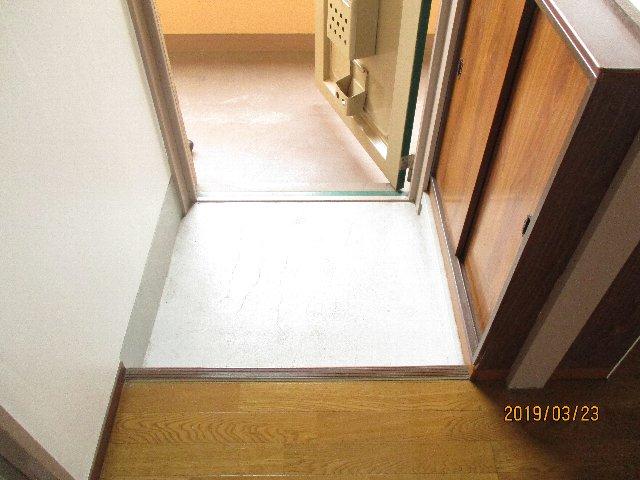 醍醐ハイツ 105号室の玄関