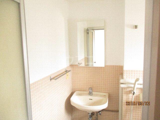 醍醐ハイツ 105号室の洗面所