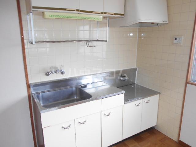 第1サンハイツ戸崎 205号室のキッチン