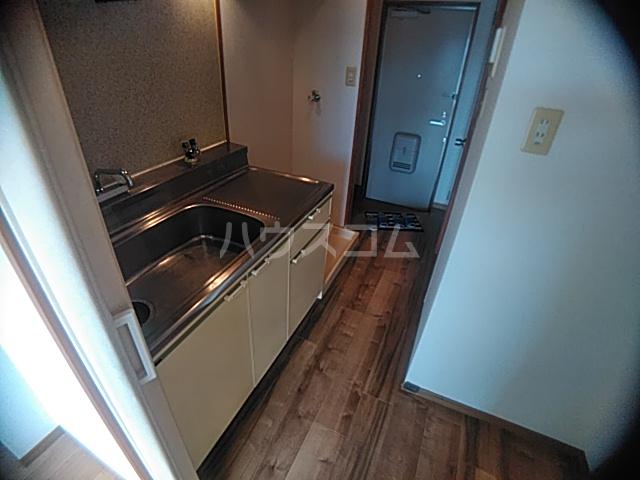 Surplus Verde Ⅱ 203号室のキッチン