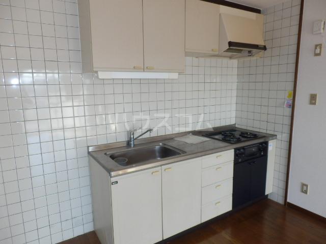 エルハイム岡崎 207号室のキッチン