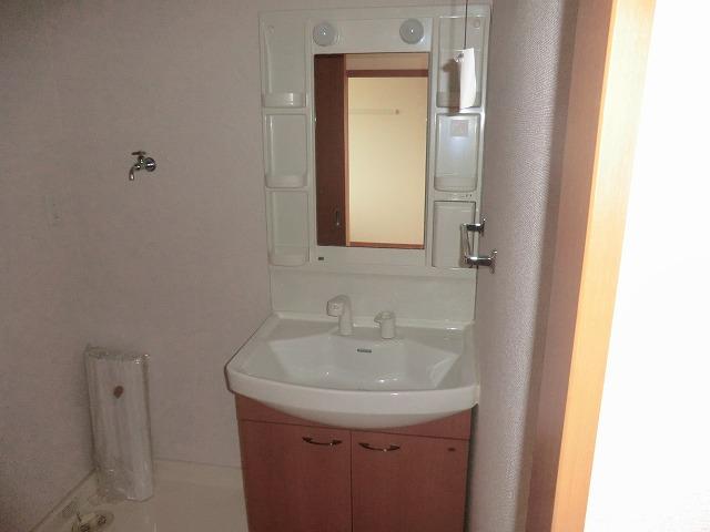 アシューレ・M 105号室の洗面所