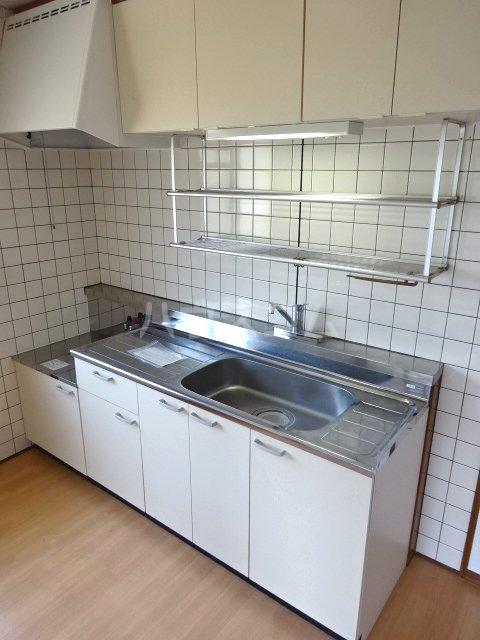 グリーンキャピタル石井 107号室のキッチン