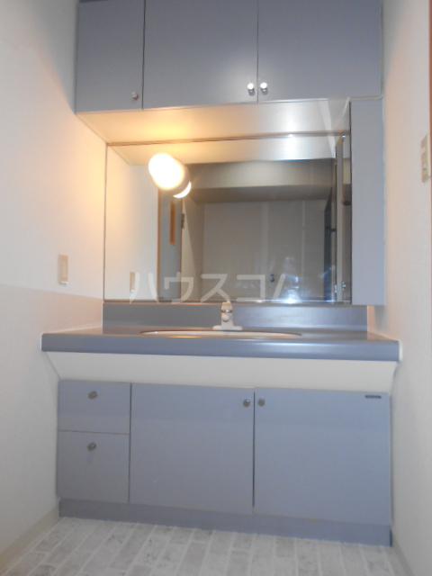 VIPロイヤル氷川台 503号室の洗面所
