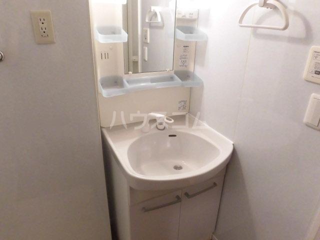 セジュール木本 A 206号室の洗面所