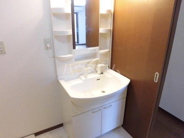 パークアベニュー 304号室の洗面所
