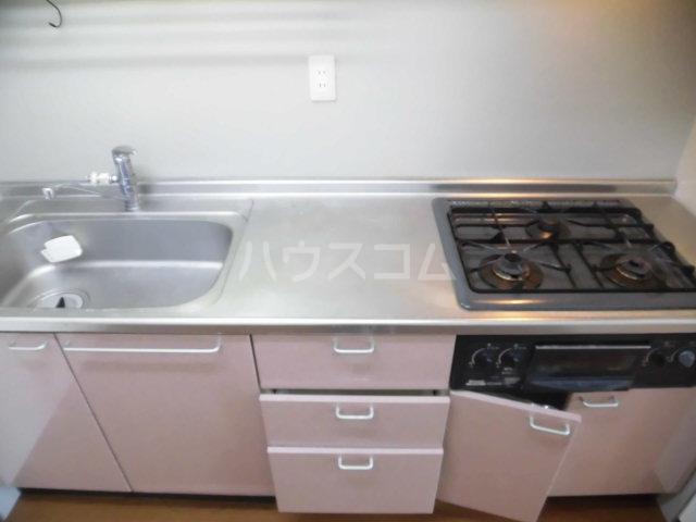 パークアベニュー 304号室のキッチン