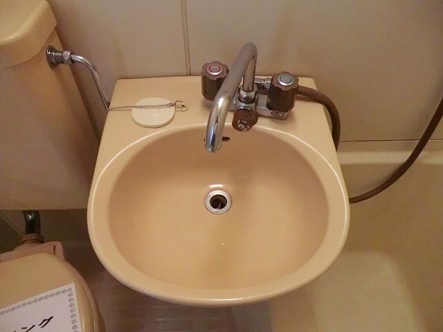 ラヴニール志木4 103号室の洗面所