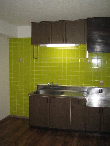 グリーンヒルNo.1 101号室のキッチン