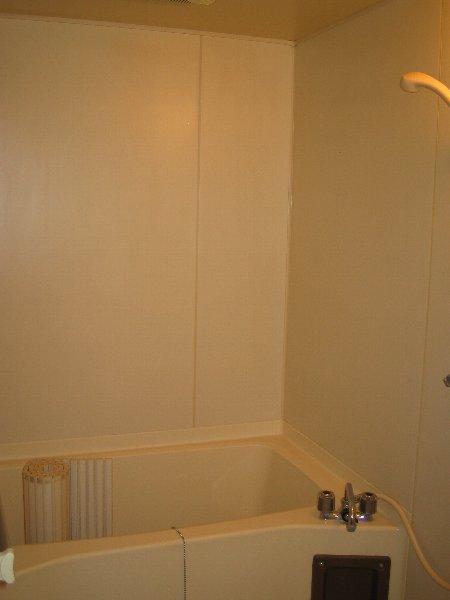 グリーンヒルNo.1 101号室の風呂