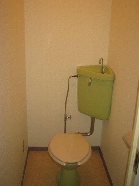 グリーンヒルNo.1 101号室のトイレ