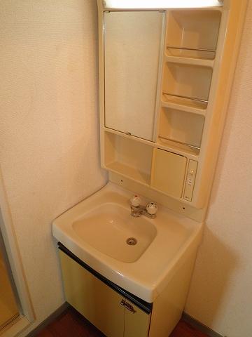 グリーンヒルNo.1 101号室の洗面所