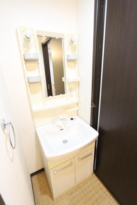 AQUA VITA 202号室の洗面所